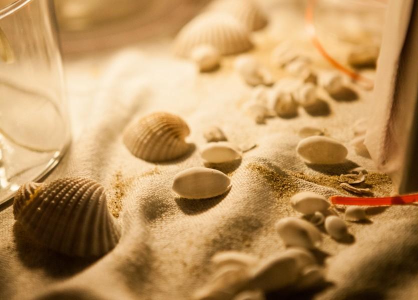 Sea shells Wedding Decoration in Greek Island of Naxos